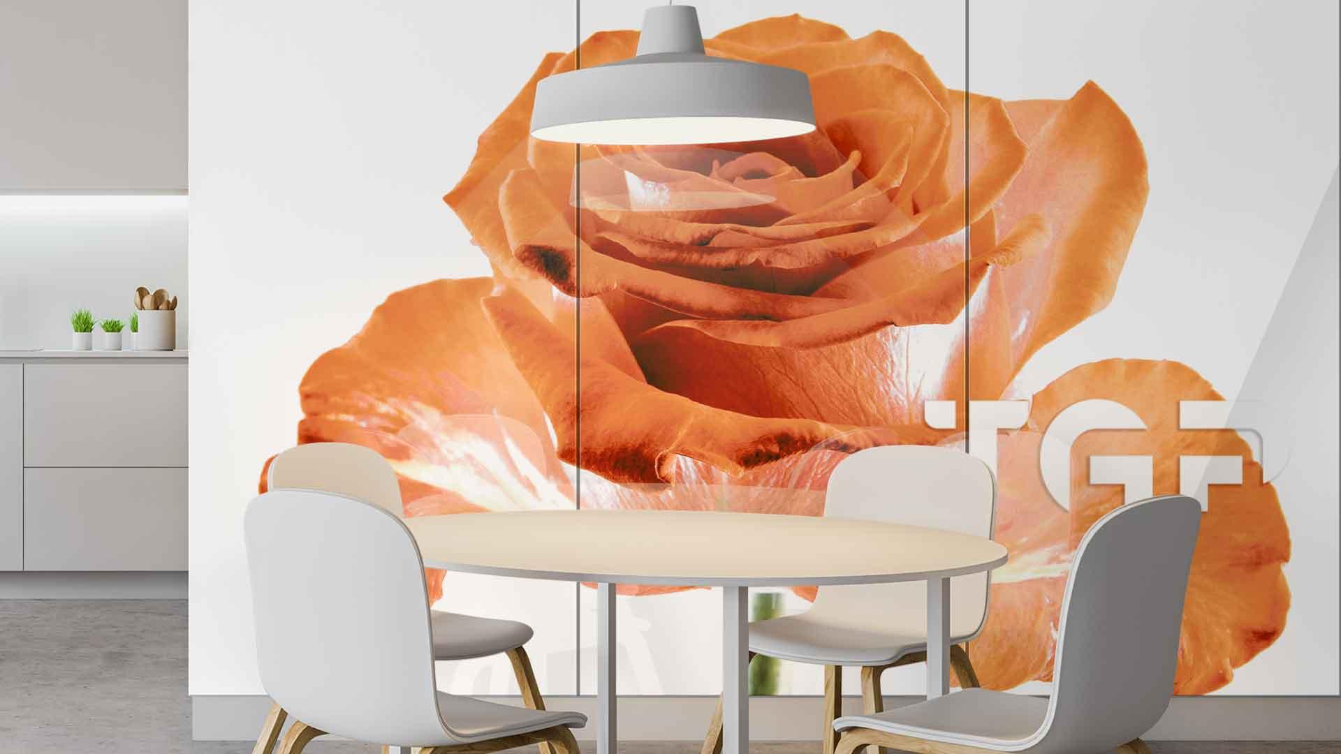 FLW003 sticlă printată bucătărie placare perete